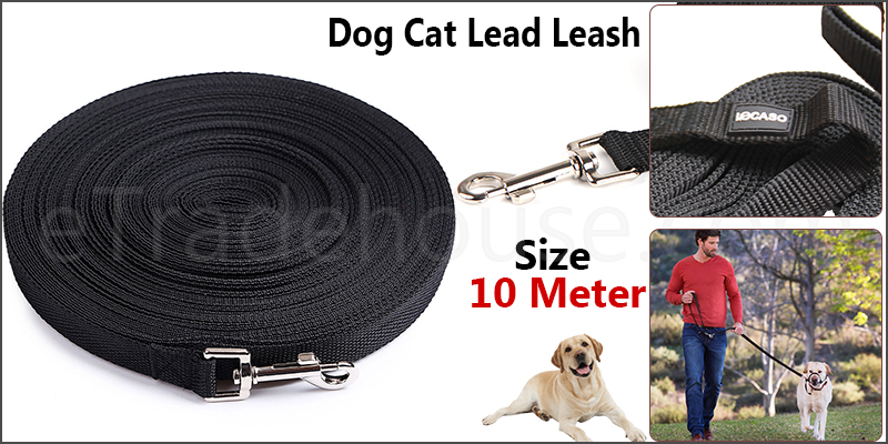Dog Cat Lead Leash Training Long Line Recall Walking Obedience Hunting