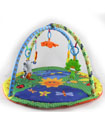 Baby Light & Musical Garden Bugs Adventure Play Ma